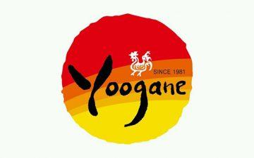 Yoogane Chicken Galbi